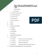 Plan Estrategico Acopagro (1)