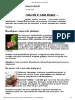 16 Insecticides Naturels Et Sans Risque