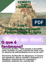 História Da Linguagem Aula 2