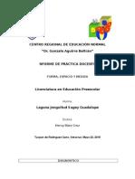 INFORME DE PRACTICA DOCENTE2.docx