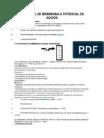 POTENCIAL DE MEMBRANA O POTENCIAL DE ACCIÓN.docx