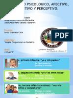 Desarrollo Psicologico, Afectivo, Cognitivo y Perceptivo.