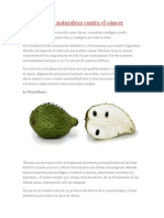 3 Frutos de La Naturaleza Contra El Cáncer