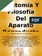 Anatomía Y Filosofía Del Aparato Reproductor