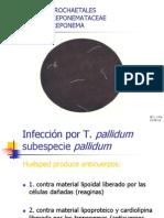 Laboratorio de Sífilis