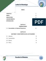 pulmon odontologia.pdf