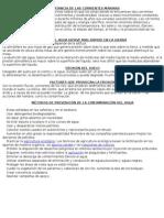 Importancia de Las Corrientes Marinas