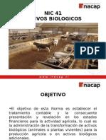 Presentacion NIC 41 2012