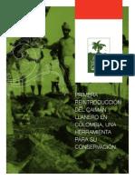 PRIMERA REINTRODUCCIÓN DEL CAIMÁN LLANERO EN COLOMBIA, UNA HERRAMIENTA PARA SU CONSERVACIÓN