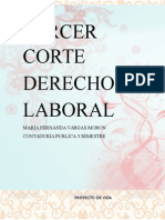TERCER-CORTE-PORTAFOLIO-DERECHO (3).docx