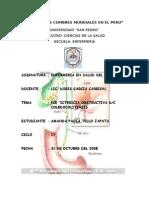 PAE de coledecolitiasis.doc