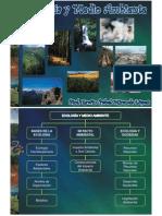 Ecologia y Medio Ambiente [Modo de ad