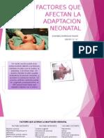 Factores Que Afectan La Adaptacion Neonatal
