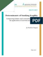 Vasileios Pappas_Determinants of Banking Fragility