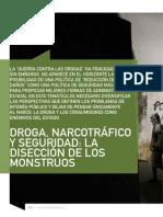Droga, Narcotrafico y Seguridad