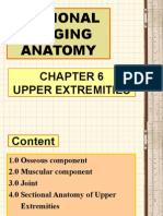Chapter 6 Upper Extremities
