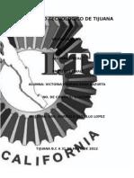 p-finalalgebralinealvictoriasilva-130313024310-phpapp02.docx