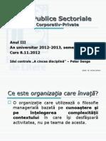 Suport Curs v RPC12-13_Organizatia Care Invata