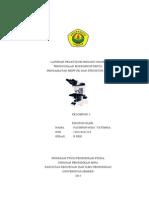 Laporan Praktikum Biologi Umum 1
