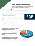 B-log-ia20.Blogspot.com-Características Generales de Los Seres Vivos El Nivel Celular