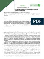 Silva & Souza 2015.pdf