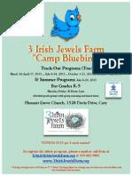 Camp Bluebird Flyer