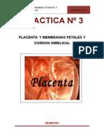 Practica Nº 03- Placenta