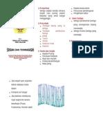 LEAFLET DIABETES MELLITUS.doc