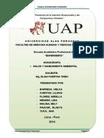 Saneamiento Ambiental UAP