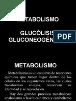 Metabolismo y Glucólisis 2013