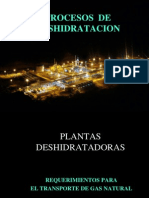 2. Procesos de Deshidratación 2014.pdf