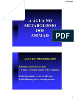 A Agua e Metabolism o Animal