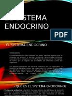 EL SISTEMA ENDOCRINO.pptx