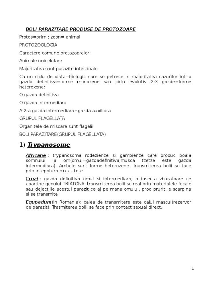 boli parazitare umane protozoare și helmintiază papillomavirus prirodni lecba