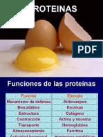 1-Proteínas
