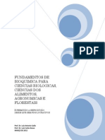 apostila teorica.pdf