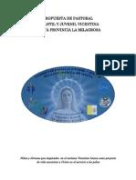 Propuesta de Pastoral Infantil y Juvenil Vicentina Revisada
