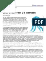 Página_12 __ Contratapa __ Beruti El Memorioso y La Escarapela