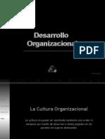 Desarrollo Organizacional Cultura y Clima.ppt