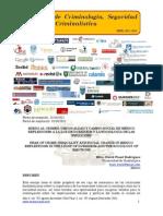 Miedo al crimen, desigualdad y cambio social en México reflexiones a la luz de Durkheim y la Sociología de las emociones