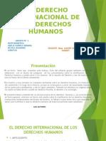 El Derecho Internacional de Los Derechos Humanos