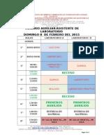 HORARIOS+LABORATORIO++DOMINGO+8+DE+FEBRERO+2015