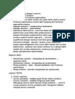 Testis definis, pengertian,fisiologi, dan anatomi