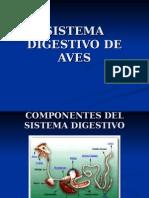 sistemadigestivodeaves-091120064310-phpapp01