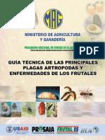 Guia ttecnica de las principales plagas artropodas