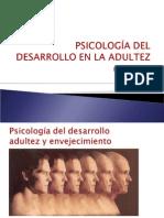 Clase 1 Minor Desarrollo Adulto 2014 PDF
