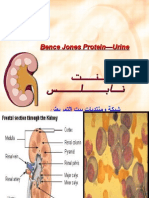 Bence Jones Protein—Urine(1).ppt