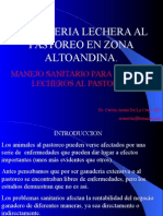 Carbunco Sintomatico Manejo Santario - M.v. Arana