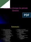 Perinee Fem
