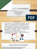 Proteinas 1DM2